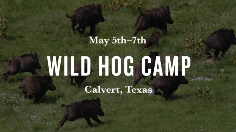wild-hog-camp-web-real-1200x800